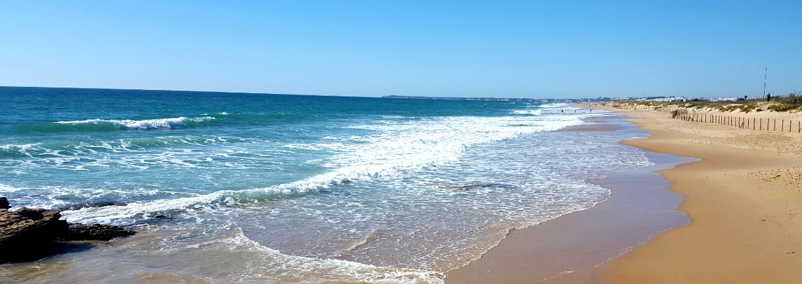 La Playa de El Palmar